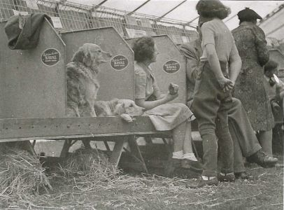 Waiting for their class - Sandy Show late 1940s