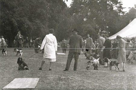 Obedience classes Sandy Show c1940s